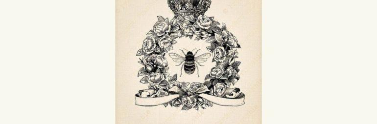 Queen Bee Society Drinks